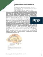 resveratrol and hippocampus