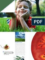 La Quimica y La Alimentacion
