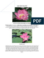 AQUATIC PLANTS.docx
