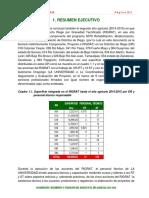 Cap 1 if Rigrat 2014-2015 Resumen Ejecutivo Vf