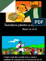 inmultirepaini (1)