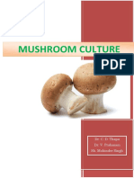 Mashroom Culture