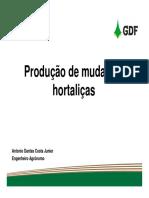 Produção-de-mudas-de-hortaliças