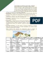 LAS OCHO REGIONES NATURALES DEL PERÚ.docx