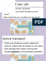 1. Active Transport (1) powerpoint for you all