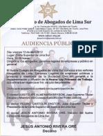 Audiencia Publica Lima Sur