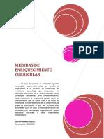 Medidas de Enriquecimiento Curricular en Primaria y Secundaria