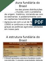 Estrutura Fundiaria Brasileira - 3b