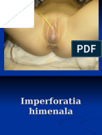 Imperforatia himenala