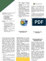 TRIPTICO - RESUMEN.docx