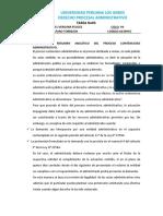 PRINCIPIOS DEL DERECHO PROCESAL APLICABLES AL PROCESO CONTENCIOSO
