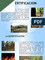 desertificacion exposicion