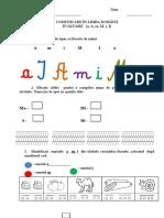 Evaluare cl I CLR.docx