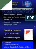Curso Básico Hepatología 1