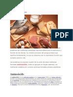 Las proteínas concepto.docx
