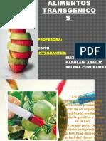 Alimentos Transgenicos Pt 18 Elizabeth Toledo Tmai