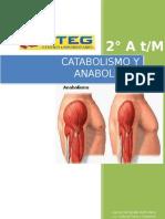 El Catabolismo y Anabolismo 2a