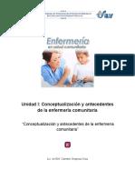 lec_11_conceptualizacion_antecedentes_enfermeria.pdf