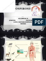 ppt Leptospirosis