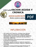 04inflamacion Aguda y Cronica
