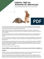 -04 - orig - Article - Gestao de projetos- Agil ou tradicional- Entenda as diferencas.pdf