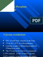Calcium & Phosphate Metabolism