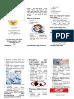 Leaflet Naso