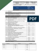Manual de Sg Sst