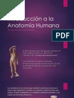 ejes y planos anatomicos