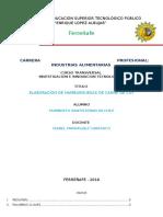 Informe Final Prof Isabel o2