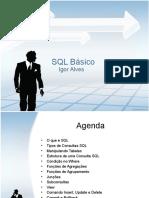 treinamentodesqlbsicoigoralves-13046863112845-phpapp01-110506075413-phpapp01.pptx