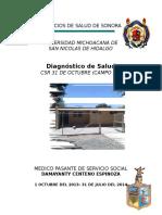 Diagnosticos Salud 2013.1