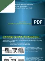 Malformatiile Bronhopulmonare