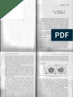 Capitulo 12 El tiempo y el hombre.pdf