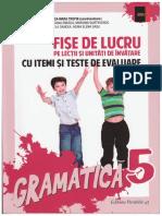 292041737 Fise de Lucru La Limba Romana Cornelia Chirita Cls 5