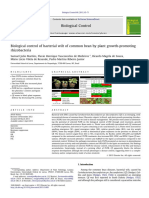 Biological Control of Bacterial Wilt of Common Bean by Plant Growth-promoting