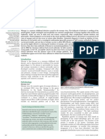 hviid2008.pdf