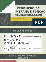 Fenômeno de Membrana e Função Neuromuscular