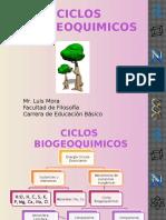 Ciclos Biogeoquimicos Luis