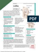 PDF Pat 041807