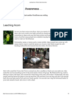 Leaching Acorn _ Riekes Nature Awareness