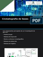 Cromatografía de Gases Presentación