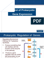 1.Gene Regulation Prokaryoperon (1).pptx