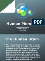 human memory- miguel valenzuela
