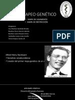 Mapeo-genético-2