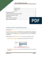 validacionexcel.pdf