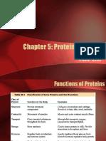 KuliahS2BiomedikProtein Function