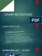 Gram Negativas