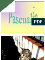 Pascualín..