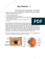 Perfect Eye Cleaners e Methods